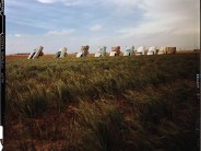 Forty Years of the Cadillac Ranch