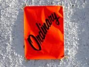 Ordinary Cover