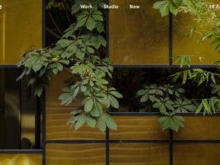 Rojkind Arquitectos Website