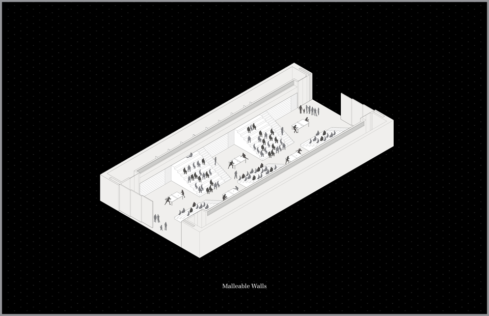 09_rifm_malleable_walls_axon