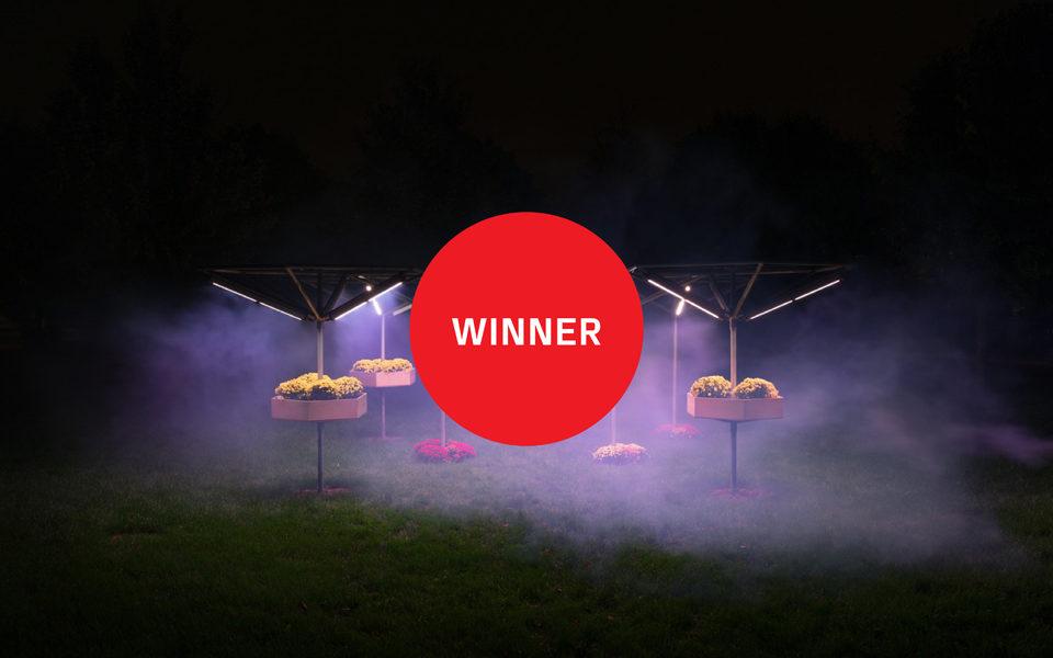 bLUMEN wins People's Choice Award