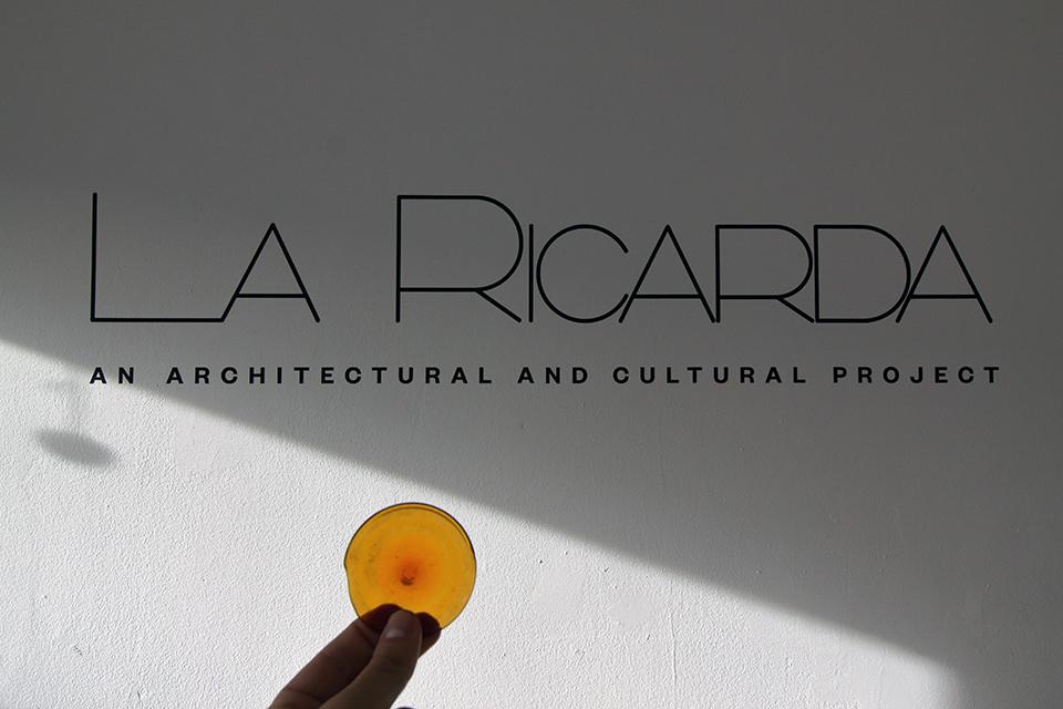mas_studio_la_ricarda_01